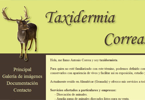 Taxidermia Correa